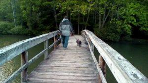 My dog and I on a walk.